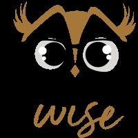 designwise-logo.png